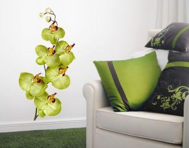 Adesivo murale no.174 Orchid Green