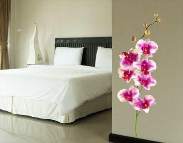 Adesivo murale no.176 Orchid Rose I