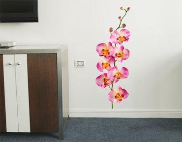 Adesivo murale no.177 Orchid Rose II