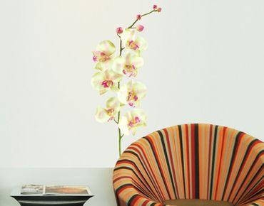 Adesivo murale no.190 Orchid White II