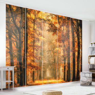 Tende scorrevoli set - Fairy Forest In Autumn
