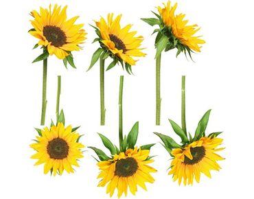 Adesivi da finestra no.193 sunflowers