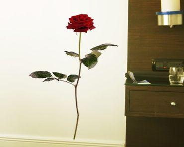 Adesivo murale no.sb53 Red Rose I