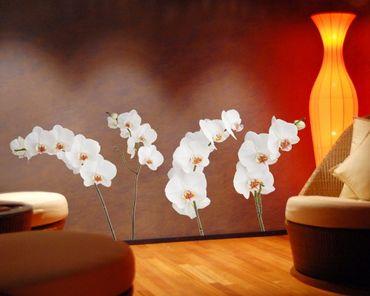 Adesivo murale no.SB60 Orchid Set IV