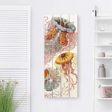 Appendiabiti in legno - Vintage Consiglio Jellyfish - Ganci cromati - Verticale