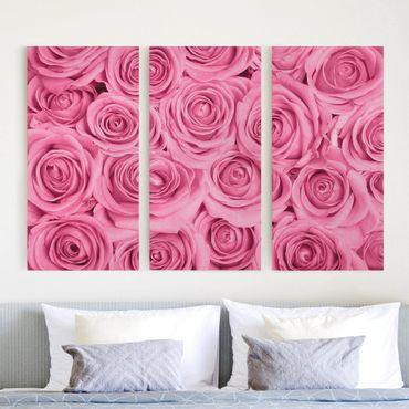 Stampa su tela - Pink Roses - Verticale 3:2
