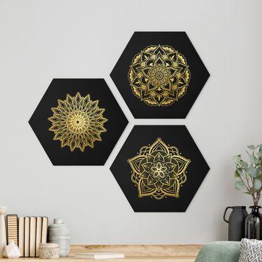Esagono in Alu-dibond - Mandala Fiore Sun Illustrazione set oro nero