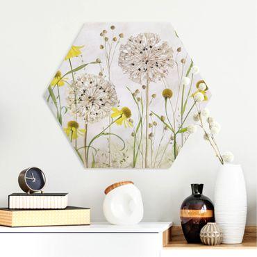Esagono in forex - Allium E Helenium Illustrazione