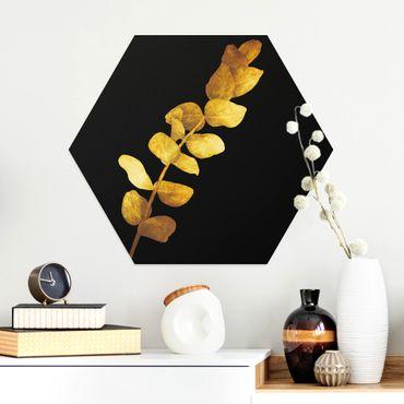 Esagono in Alu-dibond - Gold - Eucalyptus On Black