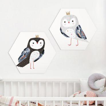 Esagono in Alu-dibond - Vincere Owl Set I