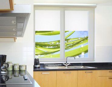 Decorazione per finestre Fresh Green