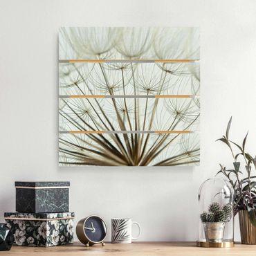 Stampa su legno - Bella Dandelion Macro Shot - Quadrato 1:1
