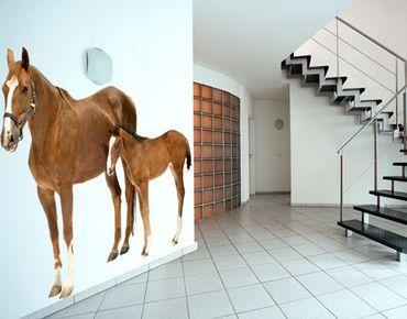 Adesivo murale no.306 Mare & Foal