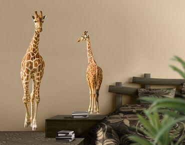 Adesivo murale no.315 Two Giraffes