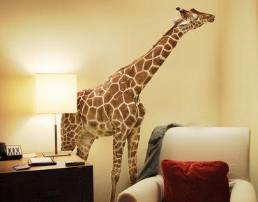 Adesivo murale no.316 Nibbling Giraffe