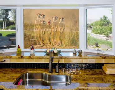 Decorazione per finestre Meerkat Family