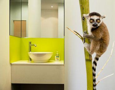Adesivo murale No.334 Ring Tailed Lemur