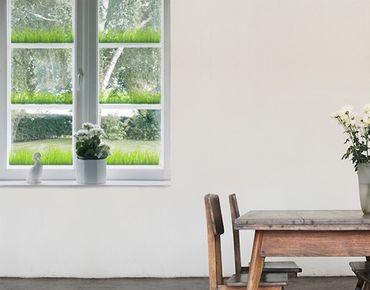 Adesivi da finestra no.328 Grass Set
