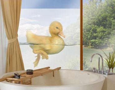 Adesivi per finestre Duckling II