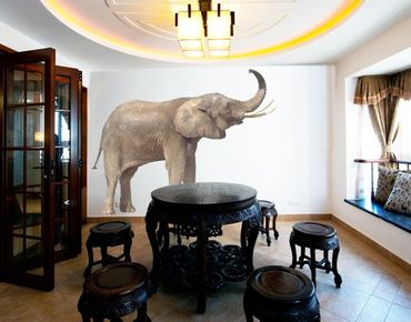 Adesivo murale no.284 Trumpeting Elephant I