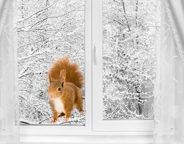Adesivi da finestra No.298 Eichhörnchen II