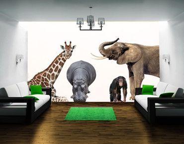Adesivo murale No.406 African Safari Set