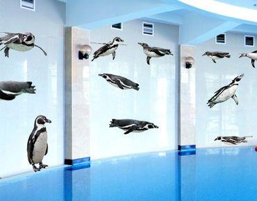 Adesivo murale no.391 Humboldt-Penguin Set