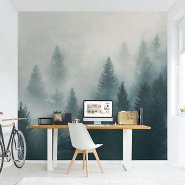 Carta da parati paesaggio - Foresta di conifere nella nebbia