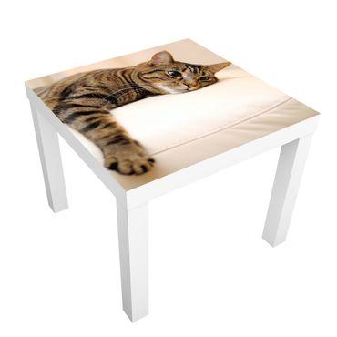Carta adesiva per mobili IKEA - Lack Tavolino Cat Chill Out