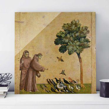 Quadro su vetro - Giotto di Bondone - St. Francis addressing the Birds - Quadrato 1:1