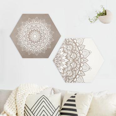 Esagono in Alu-dibond - Mandala Illustrazione Shabby Set Beige Bianco