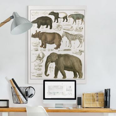 Stampa su tela - Vintage Consiglio elefanti, zebre e Rhino - Verticale 4:3