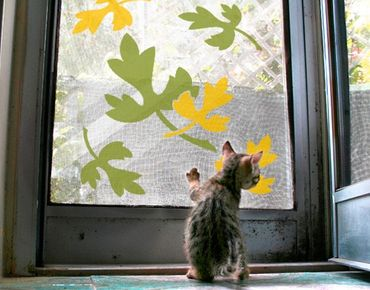 Adesivi da finestra no.CG31 Leaves