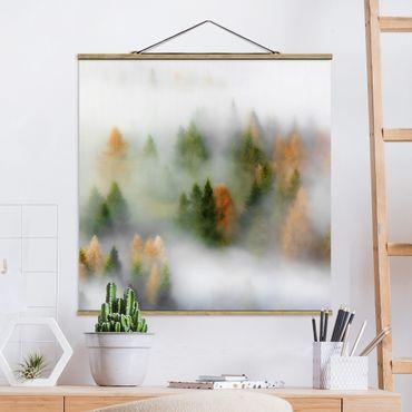 Foto su tessuto da parete con bastone - Cloud Forest In Autunno - Quadrato 1:1