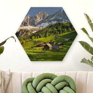 Esagono in legno - Stiria Alpine Prato