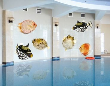 Adesivo murale No.618 Fish Set