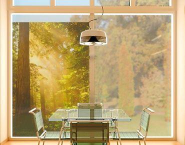 Decorazione per finestre Morning Gold