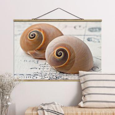 Foto su tessuto da parete con bastone - Shell Duo - Orizzontale 2:3