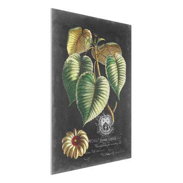Stampa su Forex - Vintage Royales foglie su fondo nero I - Verticale 4:3