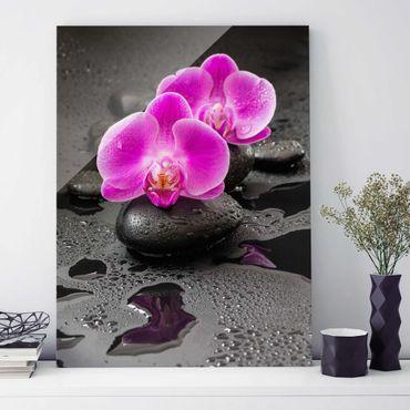 Quadro in vetro - Pink Orchid Fiori Sulle Pietre Con Le Gocce - Verticale 4:3