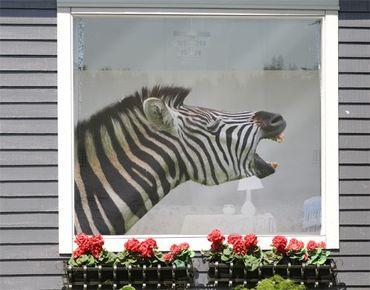 Decorazione per finestre Rawling Zebra