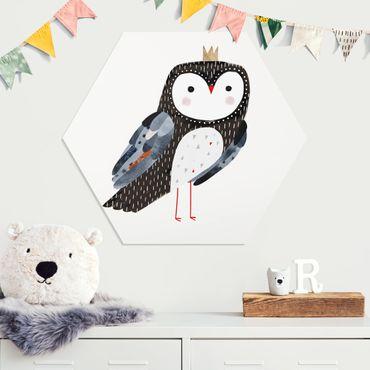 Esagono in forex - Vincere Owl scuro