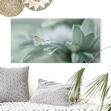 Stampa su tela - Farfalla E Gocce di rugiada In Pastel Verde - Orizzontale 2:1