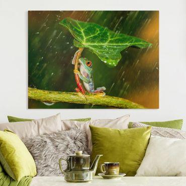 Stampa su tela - Rana In The Rain - Orizzontale 4:3