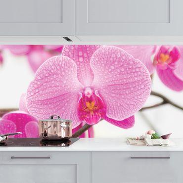Rivestimento cucina - Orchidea in primo piano