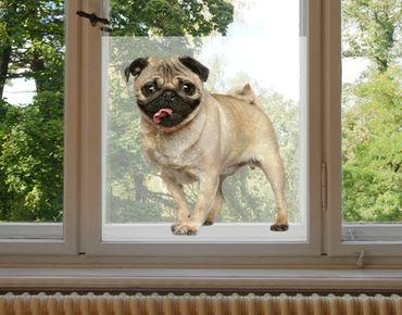Decorazione per finestre Jolly Like A Pug