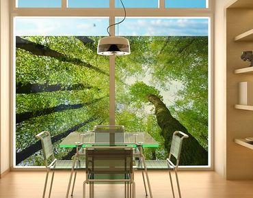 Decorazione per finestre Trees Of Life