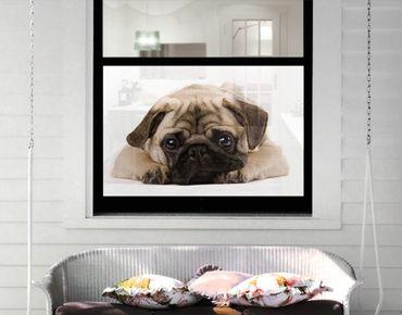 Decorazione per finestre Cuddly Pug