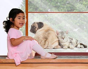 Decorazione per finestre Puggie And Kitten