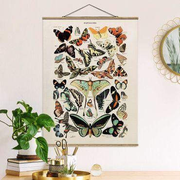 Foto su tessuto da parete con bastone - Vintage Consiglio farfalle e falene - Verticale 4:3